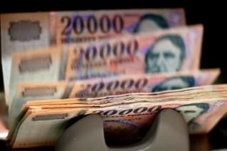 forint (forint, sziget, pénztárca,)
