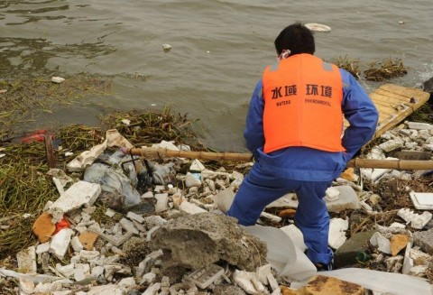 Sangahji disznók (shanghaj, sertéstetem, folyó, )