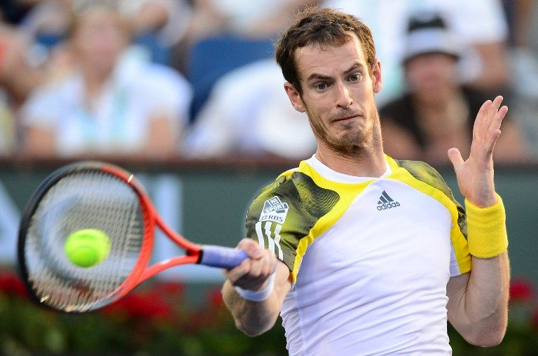 andy murray (andy murray, )