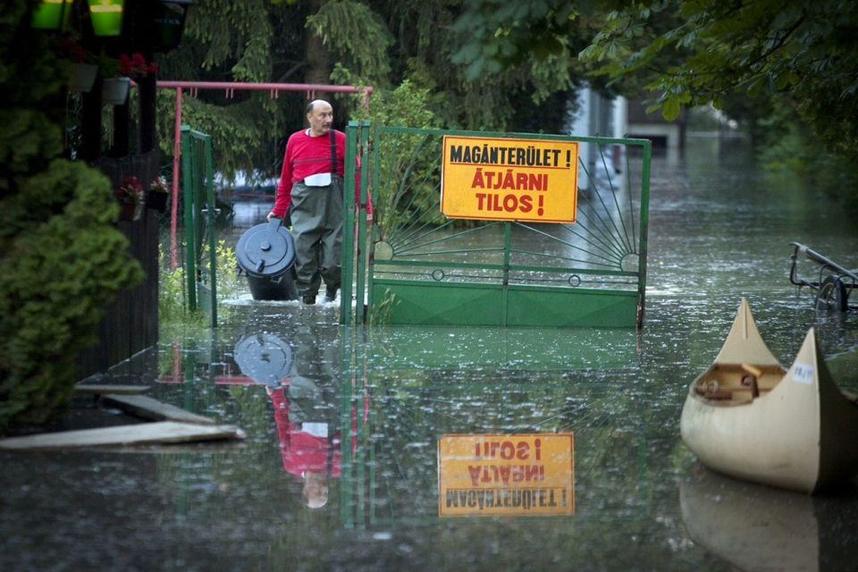 Fél árvíz Prosztata Vélemények