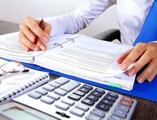 könyvelő (adóellenőrzés, )