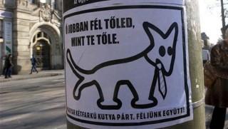 ketfarku-kutyapart(960x640).jpg (kétfarkú kutya párt, )