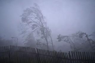 szel(960x640)(1).jpg (szél, vihar, )