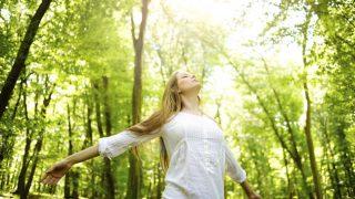 napsütés (Buddhizmus, vallás, hit, spritualitás)