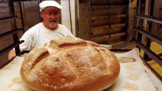 Pék (pék, kenyér,)