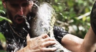eaten alive discovery (reality show, )