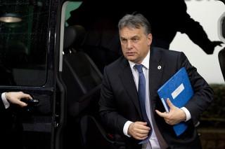 Orban(d17f3009-778d-4e16-826c-d12c5884f47f)(430x286).jpg (Orbán)