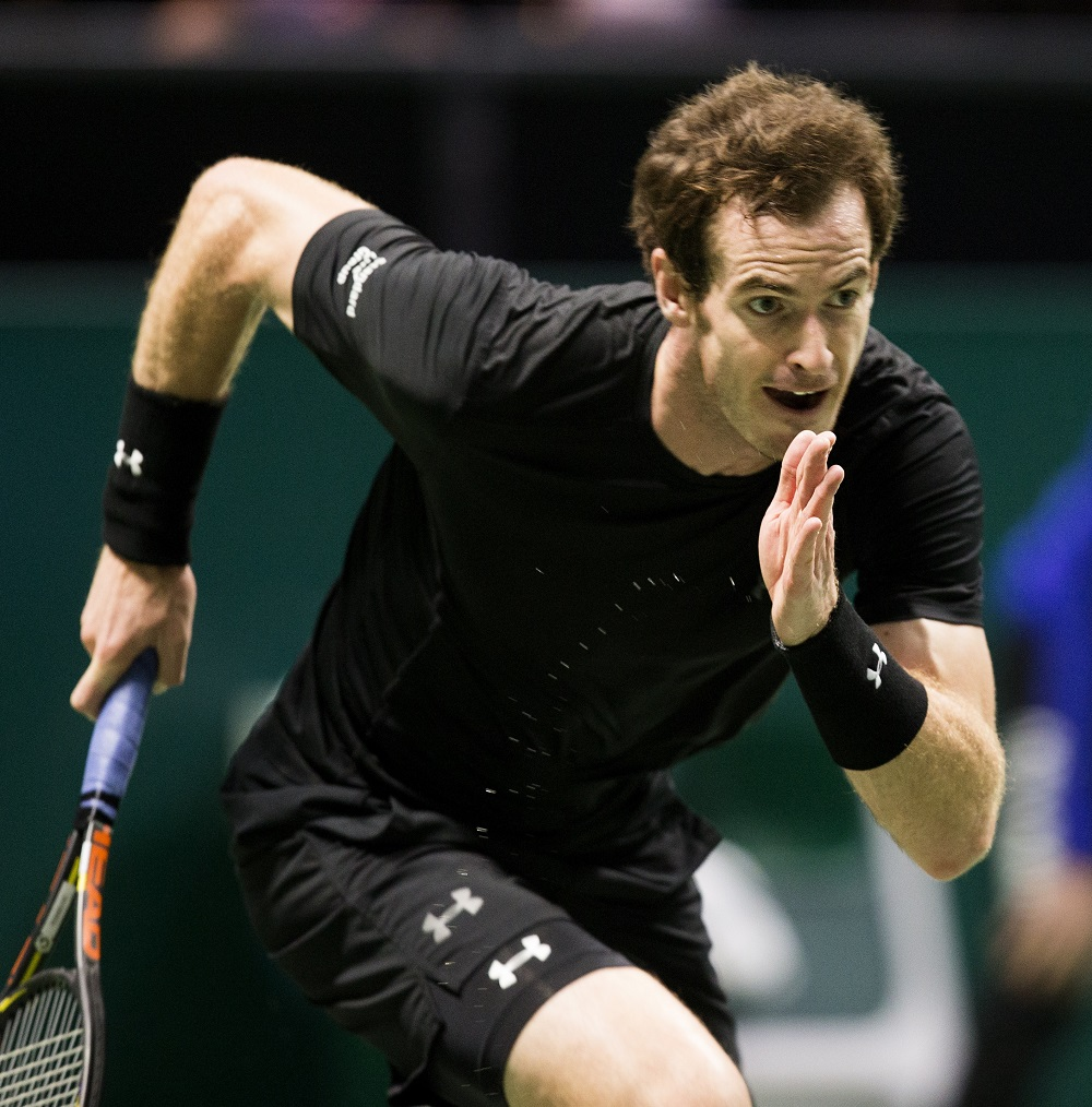 andy murray (andy murray)
