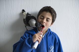 Pingvin a szarka (Pingvin a szarka)