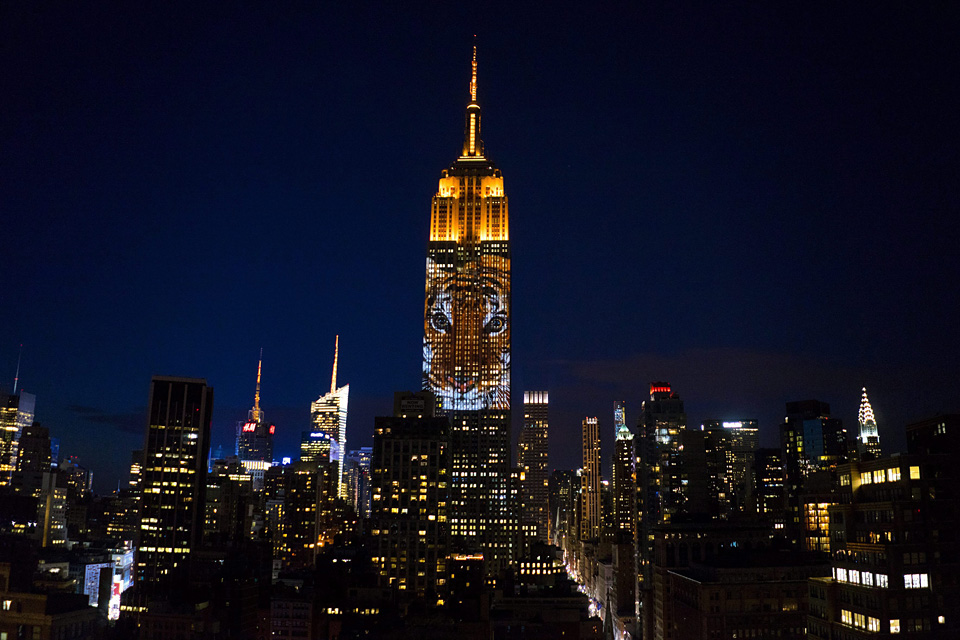 Empire State Building (Array)