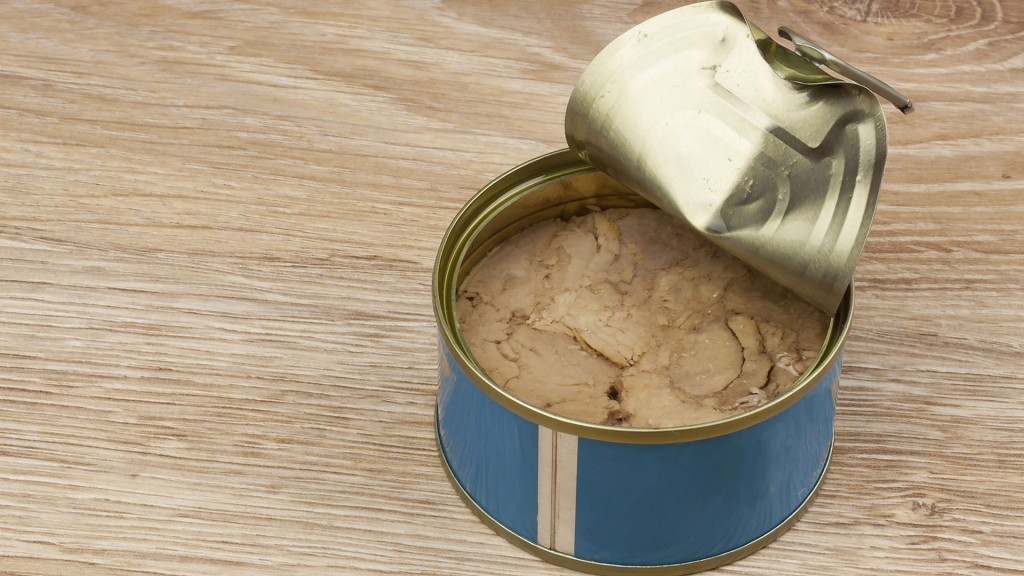 Fish - canned tuna in olive oil healthy meals