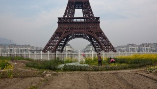 The underused and rugged green space surrounding the fake Eiffel Tower in Tianducheng is now utilized by local laborers for small garden plots