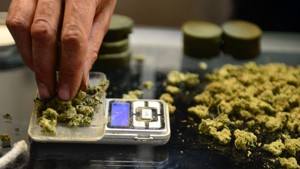 A vendor weighs buds for card-carrying medical marijuana patients attending Los Angeles' first-ever cannabis farmer's market at the West Coast Collective medical marijuana dispensary, on the fourth of July, or Independence Day, in Los Angeles, California on July 4, 2014 where organizer's of the 3-day event plan to showcase high quality cannabis from growers and vendors throughout the state.   AFP PHOTO/Frederic J. BROWN / AFP / FREDERIC J. BROWN