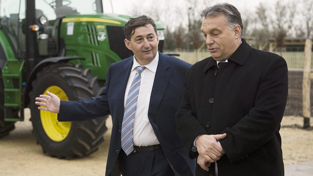 Alcsútdoboz, 2014. november 18.Orbán Viktor miniszterelnök (j) és Mészáros Lőrinc (Fidesz-KDNP) felcsúti polgármester a Búzakalász 66 Felcsút Kft. bányavölgyi mangalicatelepének avatásán a Fejér megyei Alcsútdobozon 2014. november 18-án.MTI Fotó: Koszticsák Szilárd