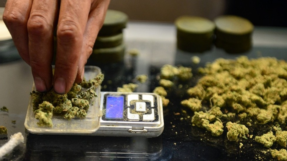 (FILES) This file photo taken on July 04, 2014 shows a vendor weighing buds for card-carrying medical marijuana patients attending Los Angeles' first-ever cannabis farmer's market at the West Coast Collective medical marijuana dispensary, on the fourth of July, or Independence Day, in Los Angeles, California.  Germany is to legalise cannabis for medicinal purposes early next year, according to the Health minister who will present draft legislation to the German cabinet on May 4, 2016 / AFP PHOTO / STF