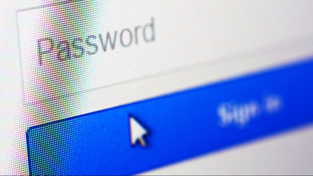 Password blank form and arrow cursor at login screen on the web site.