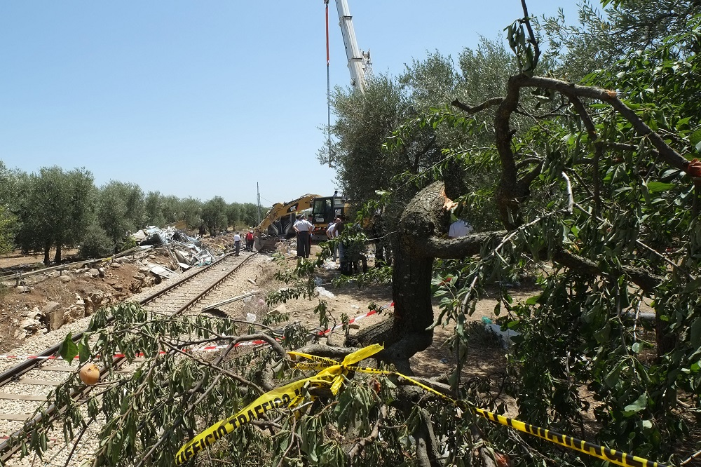 Officials inspect the train crash site on July 13, 2016 near Corato, in the southern Italian region of Puglia as rescuers searched for missing bodies from the wreckage of a head-on collision that claimed at least 25 lives.  As the country grieved, investigators were trying to establish the cause of the high-speed crash between two busy passenger trains in the Puglia region of southern Italy. The civil protection agency said 25 bodies had been recovered, two people were missing and 50 people had been injured. / AFP PHOTO / MARIO LAPORTA