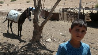 A Palestinian boy poses next to a donkey in the Israeli-occupied West Bank area of Tubas, on July 19, 2016. Israeli authorities say they round up wandering livestock in the interests of public safety, especially to reduce road accidents.Palestinians, however, see a policy aimed at pushing them out of the valley running along the border with Jordan. The Israeli army has turned 18 percent of the West Bank into training grounds, according to United Nations data. Nevertheless, 6,200 Palestinians still live in such areas.     / AFP PHOTO / JAAFAR ASHTIYEH