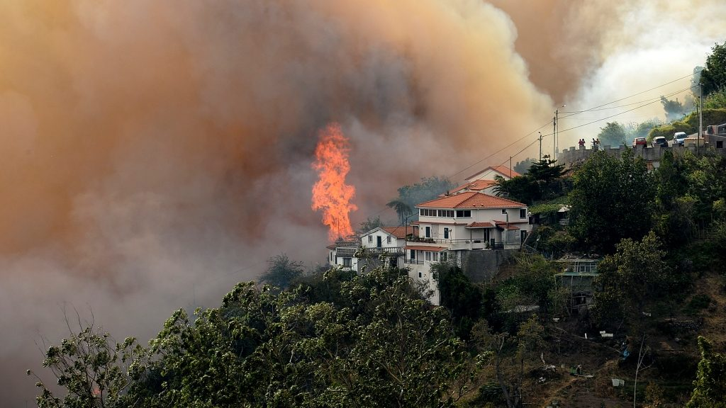 A wildfire blazes near houses at Curral dos Romeiros, Funchal in Madeira island on August 9, 2016. Several houses were destroyed by multiple blazes in the region of Funchal and some 250 people were evacuated to spend the safe night in military installations, said the head of the Civil Protection government regional, Rubina Leal. / AFP PHOTO / JOANA SOUSA