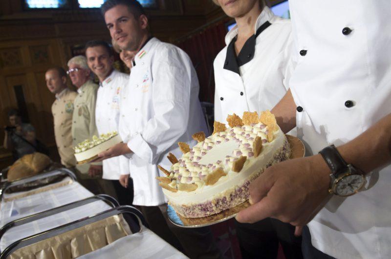 Budapest, 2016. augusztus 4. Bemutatják Magyarország cukormentes tortáját, az Áfonya hercegnõ tortáját az Országház Vadásztermében 2016. augusztus 4-én. Elõzõleg Vargha Tamás, a Honvédelmi Minisztérium parlamenti államtitkára sajtótájékoztatót tartott az augusztus 20-ai ünnepségekrõl, programokról. MTI Fotó: Koszticsák Szilárd