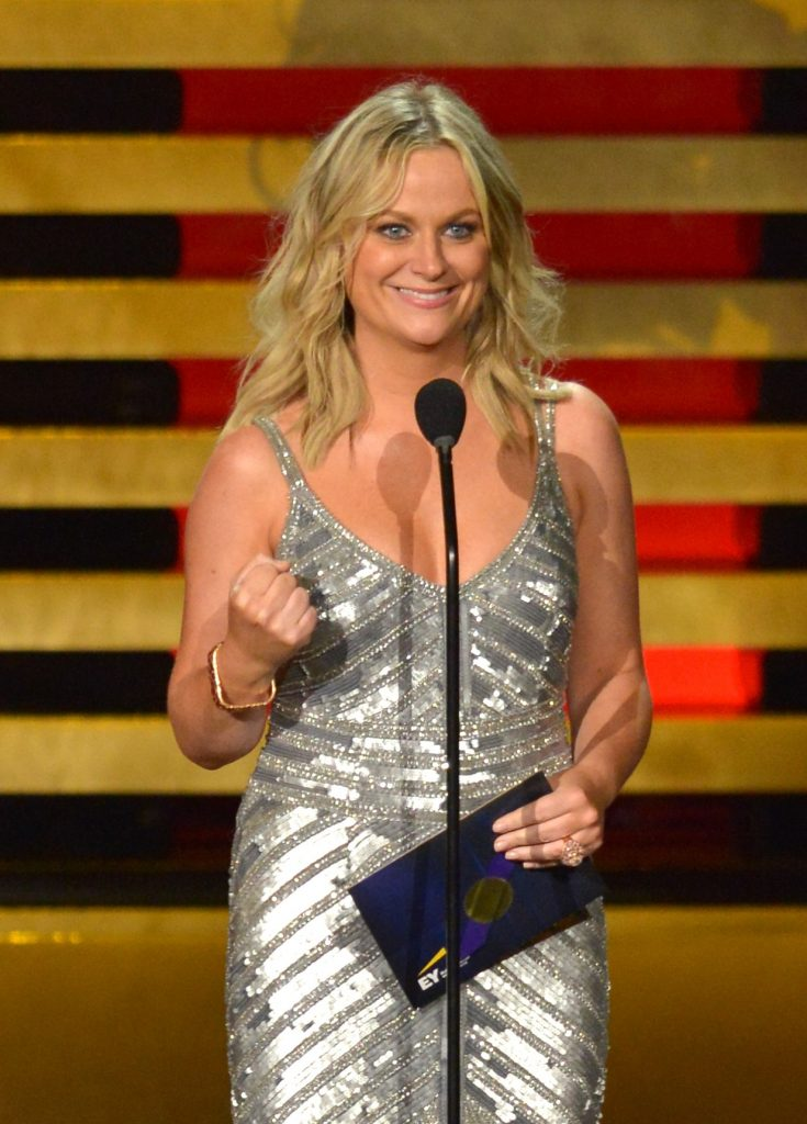 LOS ANGELES, CA - AUGUST 25:  Actress Amy Poehler onstage at the 66th Annual Primetime Emmy Awards held at Nokia Theatre L.A. Live on August 25, 2014 in Los Angeles, California.  (Photo by Lester Cohen/WireImage)