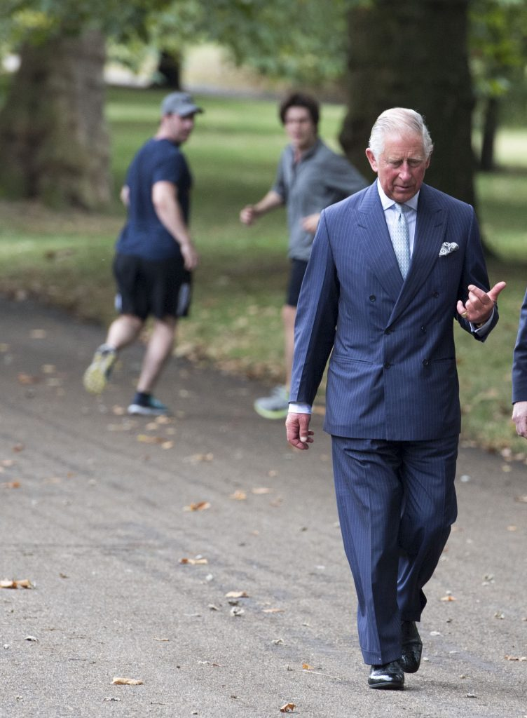 LONDON, ENGLAND - SEPTEMBER 06: Prince Charles, Prince of Wales attends the celebration of the creation of The Queen's Meadow as part of his nationwide Coronation Meadows project in Green Park on September 06, 2016 in London, England. The Prince of Wales founded the Coronation Meadows project to mark the 60th anniversary of The Queen's Coronation. The aim was to create a wildflower meadow in every British county. (Photo by Arthur Edwards - WPA Pool /Getty Images)