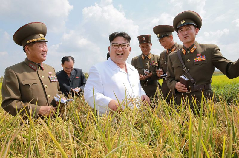 This undated picture released from North Korea's official Korean Central News Agency (KCNA) on September 13, 2016 shows North Korean leader Kim Jong-Un (C) inspecting Farm No. 1116 under KPA Unit 810 at an undisclosed location in North Korea. / AFP PHOTO / KCNA / KCNA