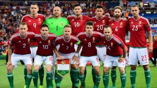 (Top, row L-R) Hungary's forward Adam Szalai, goalkeeper Gabor Kiraly,  midfielder Adam Pinter, defender Richard Guzmics, defender Tamas Kadar,  defender Roland Juhasz, (bottom row, L-R)  defender Adam Lang,  midfielder Zoltan Gera, midfielder Balazs Dzsudzsak,  midfielder Adam Nagy,  forward Gergo Lovrencsics pose prior to the  Euro 2016 round of 16 football match between Hungary and Belgium at the Stadium Municipal in Toulouse on June 26, 2016.   / AFP PHOTO / ATTILA KISBENEDEK