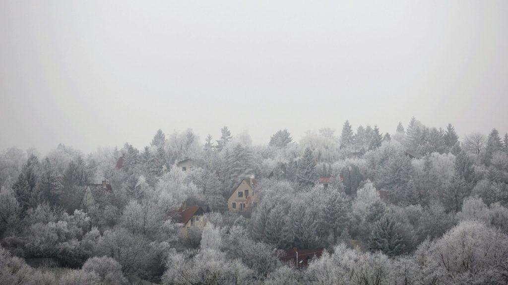 Csobánka, 2016. december 21. Zúzmarás fák Csobánkán 2016. december 21-én. MTI Fotó: Mohai Balázs