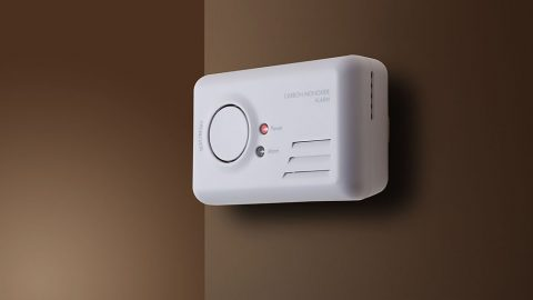 65278218 - carbon monoxide alarm mounted to interior wall