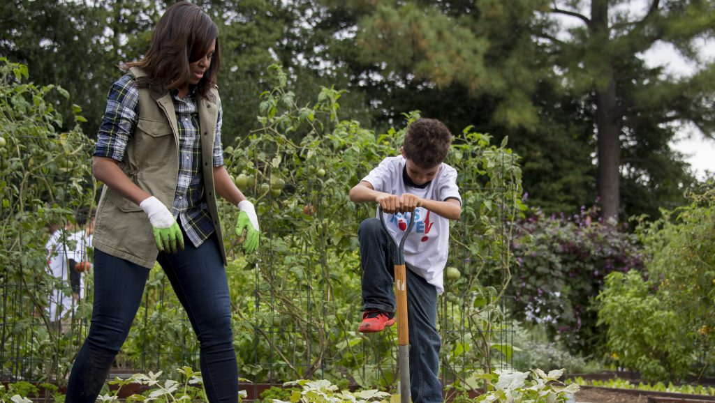 First Lady Michelle Obama (L) helps a child harvest sweet potatoes from the White House Kitchen Garden during a harvesting event at the White House in Washington, DC, October 6, 2016. / AFP PHOTO / JIM WATSON