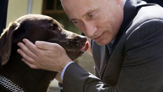 Russian Prime Minister Vladimir Putin pets Labrador Tonik during his meeeting with Russian  rescue workers in the Novo-Ogaryovo residence outside Moscow, Friday, June 6, 2008. Tonik,  legendary rescuer dog of the Emergency Situations Ministry, helped Russian emergency workers save victims of China's devastating earthquake.      AFP PHOTO / POOL / ALEXANDER ZEMLIANICHENKO / AFP PHOTO / POOL / ALEXANDER ZEMLIANICHENKO