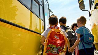 12385842 - children of primary school catching the schoolbus