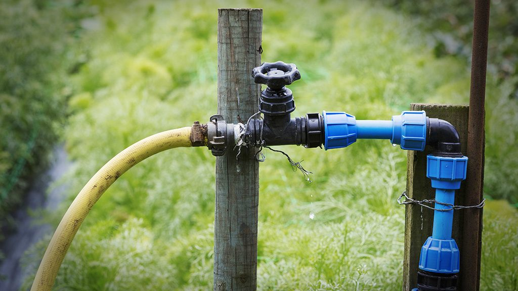 [England] A garden tap and connected blue and yellow hose.
