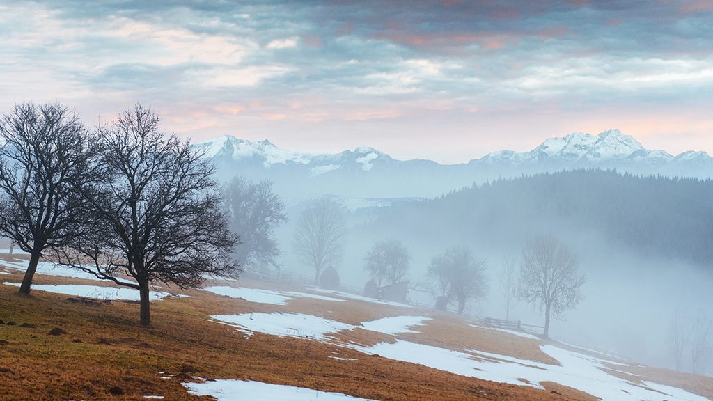 the last days of winter in the mountains of Ukraine, thick fog. Carpathians. Europe