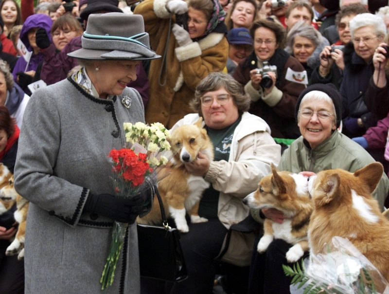 Queen Elizabeth II talks with members of the Manitoba Corgi Association during a visit to Winnipeg 08 October 2002. The queen, making her 20th trip to Canada, is the last stop on the year-long jubilee tour celebrating her 50-year reign.  AFP PHOTO/POOL/Adrian WYLD / AFP PHOTO / CP / ADRIAN WYLD