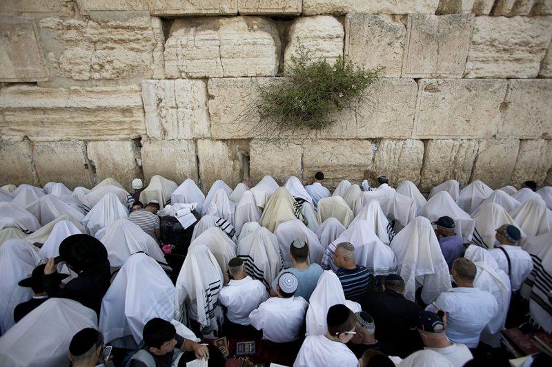 Jeruzsálem, 2016. április 25.Ultraortodox zsidók fejüket imasállal letakarva imádkoznak a Siratófalnál, Jeruzsálem óvárosában 2016. április 25-én, a zsidó húsvét (pészah) nyolcnapos ünnepének harmadik napján.(MTI/EPA/Abir Szultan)
