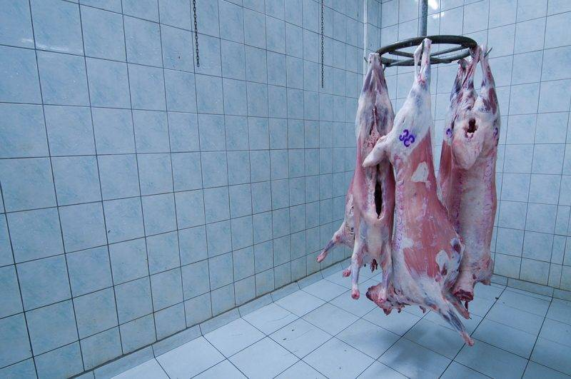 Skinned sheeps in freezer.Available light was used.