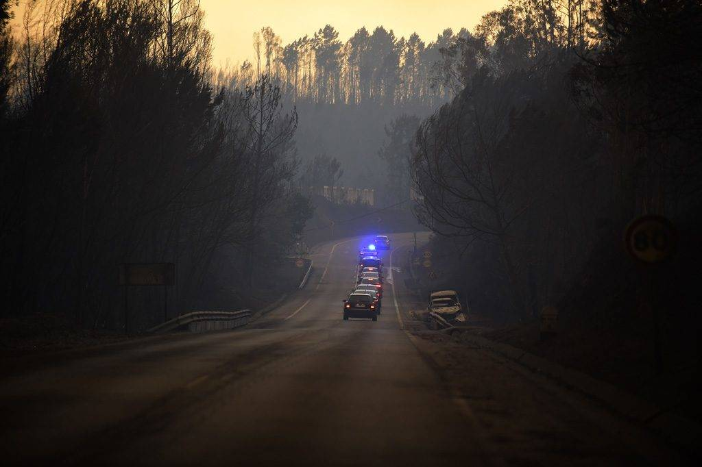 Some official cars drive on a road in an area devastated by a wildfire near the village of Barraca da Boavista, on May 18, 2017.