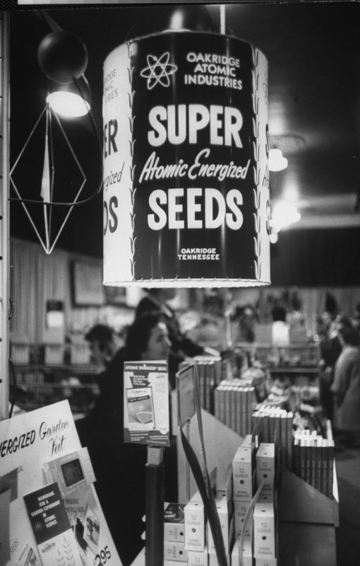 Garden show featuring atomic energized seeds and plants.  (Photo by Frank Scherschel/The LIFE Picture Collection/Getty Images)