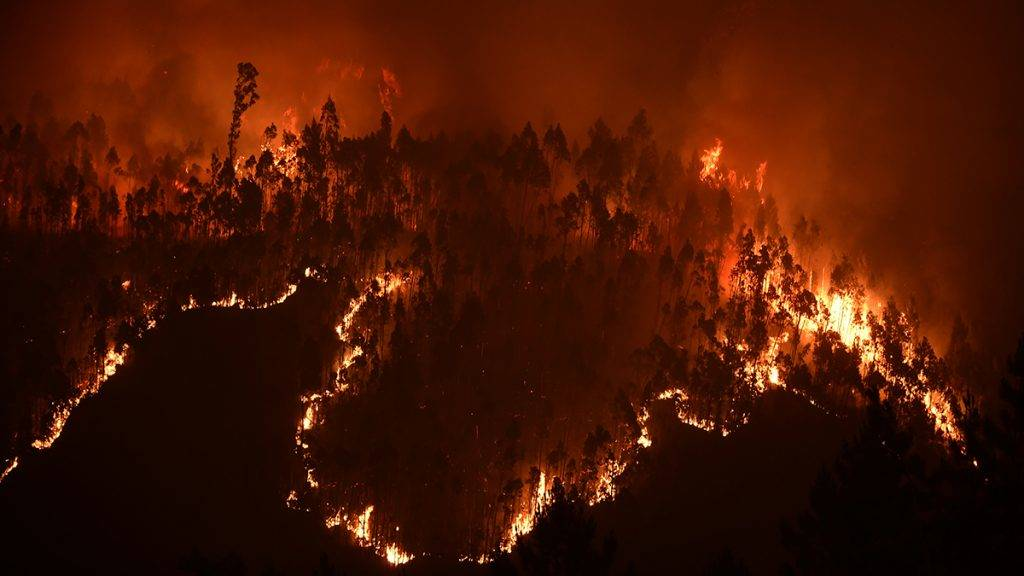 A picture taken on June 18, 2017 shows a forest in flames during a wildfire near the village of Mega Fundeira. 