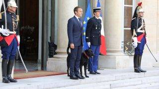 French president Emmanuel Macron stands outside the Elysee Palace in Paris on August 28, 2017, after a government meeting flanked by a dog named Nemo, adopted few days before by the French presidential couple from the SPA animal protection society. / AFP PHOTO / LUDOVIC MARIN