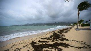A picture taken on September 5, 2017 shows a view of the Baie Nettle beach in Marigot, with the wind blowing ahead of the arrival of Hurricane Irma.Ferocious Hurricane Irma bears down on the eastern Caribbean with strong winds and potential for huge storm surges, prompting people to pack into shelters, stock up on essentials and evacuate tourist areas as far north of Florida. / AFP PHOTO / Lionel CHAMOISEAU