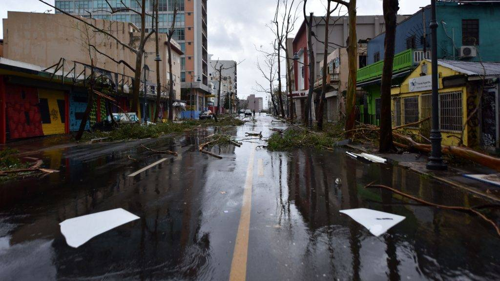 Fallen trees are seen on a street after the passage of Hurricane Maria, in San Juan, Puerto Rico, on September 20, 2017. Maria slammed into Puerto Rico on, cutting power on most of the US territory as terrified residents hunkered down in the face of the island's worst storm in living memory. After leaving a deadly trail of destruction on a string of smaller Caribbean islands, Maria made landfall on Puerto Rico's southeast coast around daybreak, packing winds of around 150mph (240kph).  / AFP PHOTO / HECTOR RETAMAL