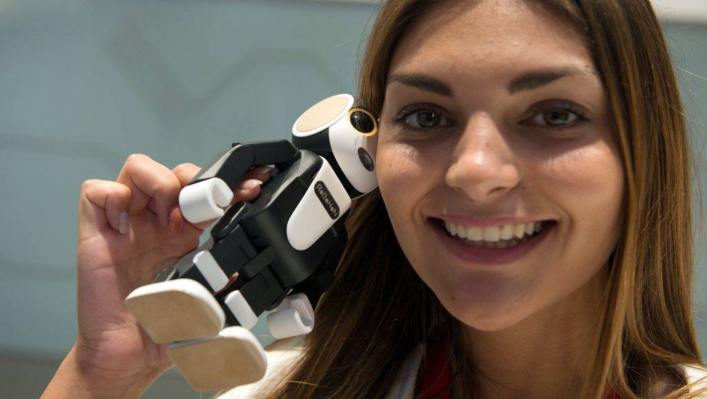 Simona speaks on the phone using the smartphone robot 'RoboHon' at the stand of Sharp at the international electronics fair IFAin Berlin, Germany, 4 September 2017. Photo: Paul Zinken/dpa
