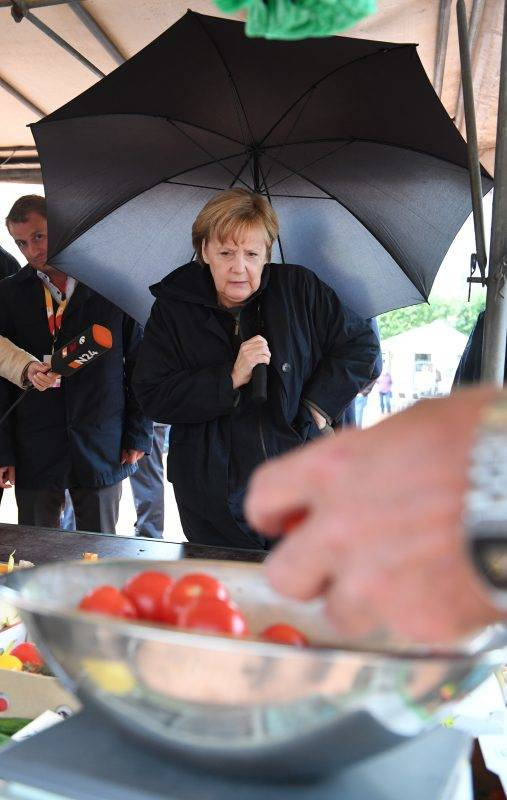 """German chancellor Angela Merkel buys Serbian plums and local tomatos from the vegetable salesman Hans-Christian Oehlckers at the Fruit trade """"Oehlckers Daskow"""", at the market place in Barth, Germany, 8 September 2017. Photo: Stefan Sauer/dpa"""