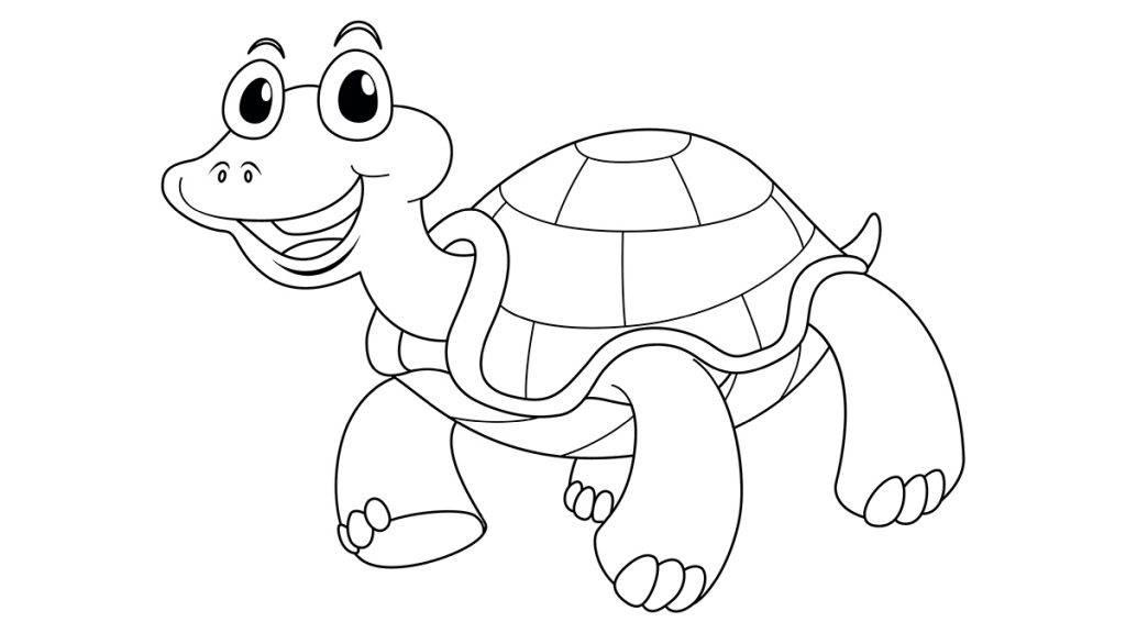 Animal outline for cute turtle illustration