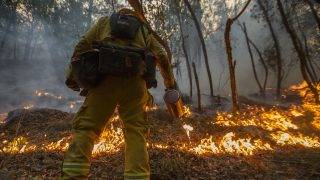 SANTA ROSA, CA -OCTOBER 15: A firefighter uses a drip torch to set a backfire to protect houses in Adobe Canyon during the Nuns Fire on October 15, 2017 near Santa Rosa, California. At least 40 people were killed while many are still missing, and at least 5,700 buildings have been destroyed since wildfires broke out a week ago.   David McNew/Getty Images/AFP