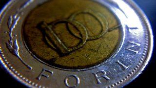 One hundred Forint - hungarian money