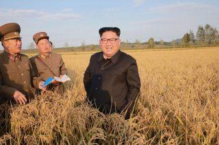 Észak-Korea, 2017. szeptember 30. Az észak-koreai kormány által 2017. szeptember 30-án közreadott dátummegjelölés nélküli képen Kim Dzsong Un elsõ számú észak-koreai vezetõ, a Koreai Munkapárt elsõ titkára (k) látogatást tesz egy gazdaságban egy ismeretlen észak-koreai helyszínen. (MTI/AP/KCNA/KNS)